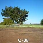 Sitio Disponible 08 - Manzana C